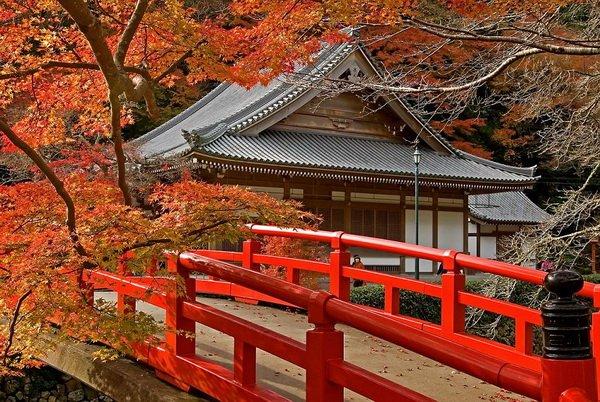 10 интересных фактов о Японии