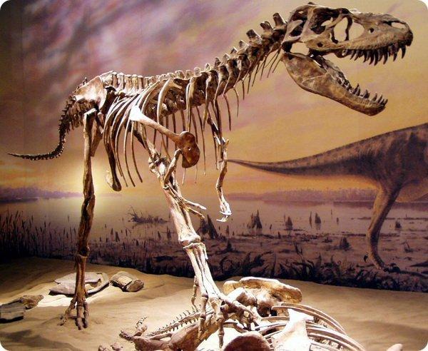 dinozavr5-3