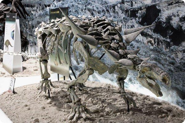 dinozavr5-4