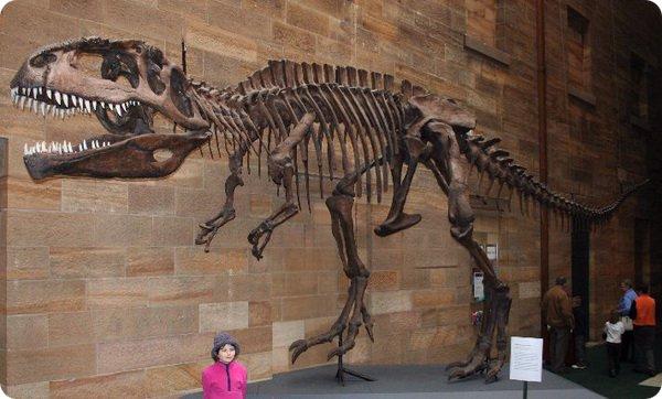 dinozavr5-5