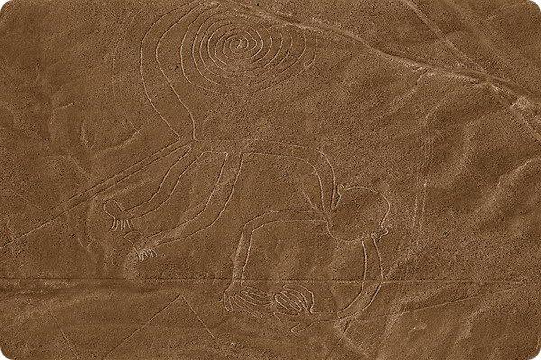 geoglifu-naski-6