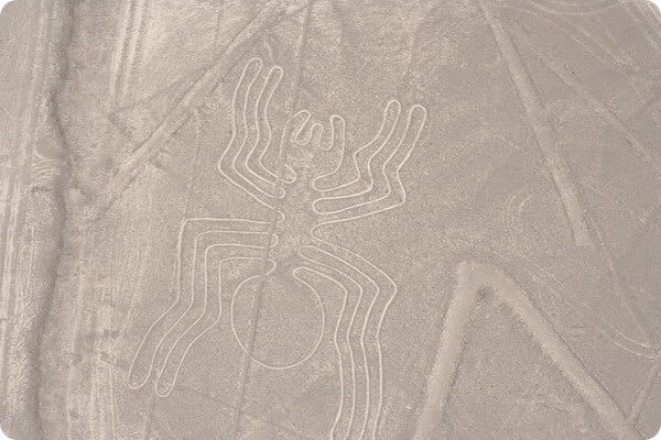 geoglifu-naski-7