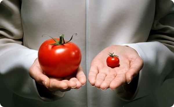 ГМО и мутации