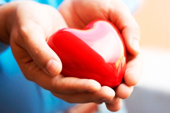 Чего вы не знали о своем сердце
