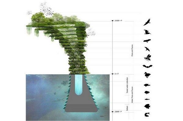 kovcheg-v-megapolise-sea-tree-4