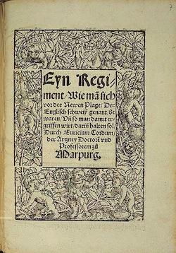 Неизвестная болезнь 16 века «английский пот»