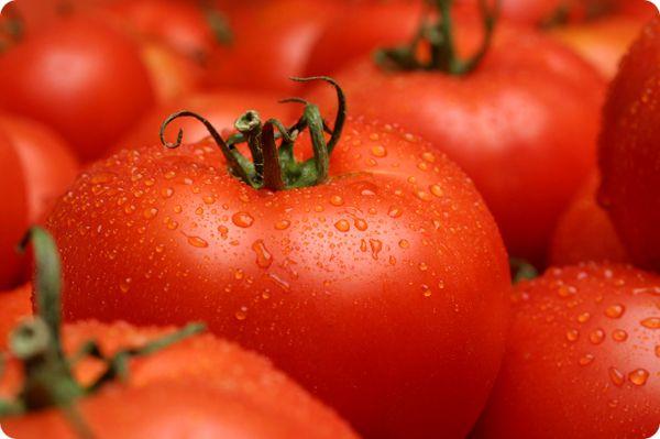 Раньше помидоры считали ядовитыми