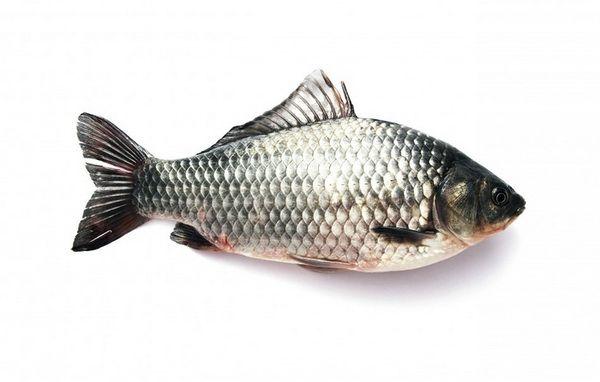Триметиламинурия или рыбный синдром