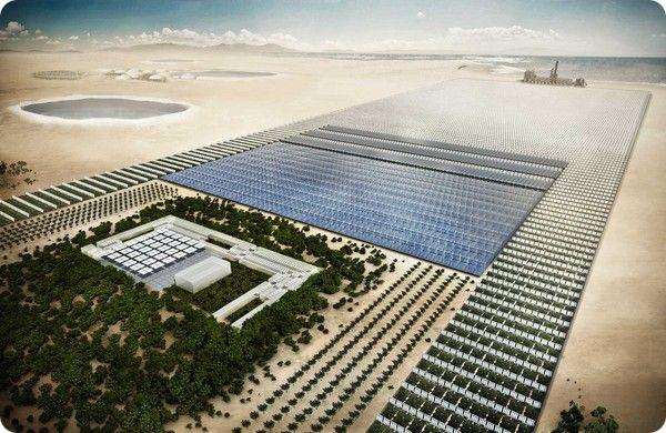 Sahara Forest Project: современный оазис посреди пустыни