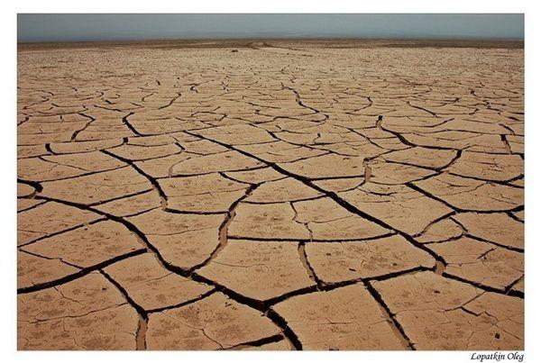 Самое засушливое место на планете