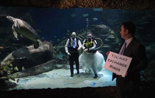 Самые необычные свадьбы на Земле