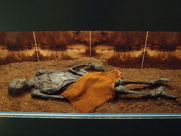strashnye-mumii-13-samyx-zhutkix-eksponatov-10