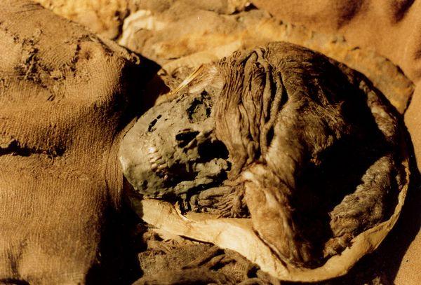 strashnye-mumii-13-samyx-zhutkix-eksponatov-7