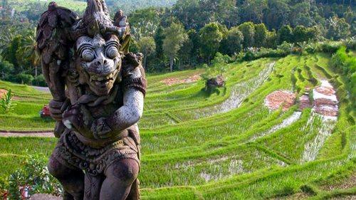 Интересные факты о Бали