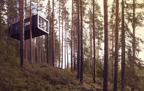 Самая экзотичная и необычная гостиница Скандинавии