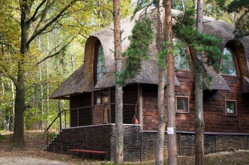 Милые лесные домики