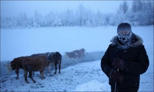 samyj-xolodnyj-gorod-na-zemle-71s-19
