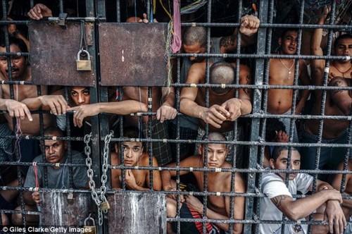 Тюрьмы Сальвадора: людей держат как скот в клетке
