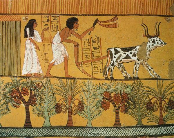 12-interesnyx-faktov-iz-istorii-drevnego-egipta-2