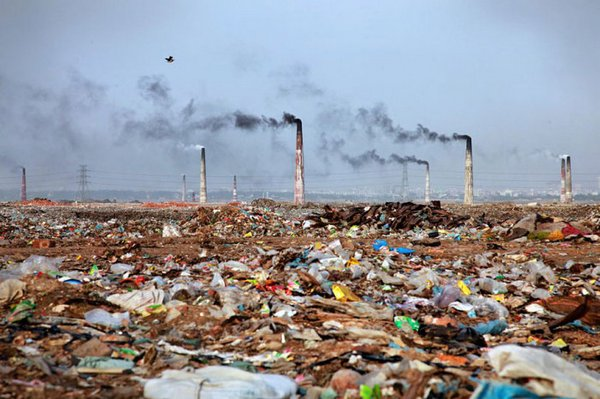 essay on environmental pollution with pictures