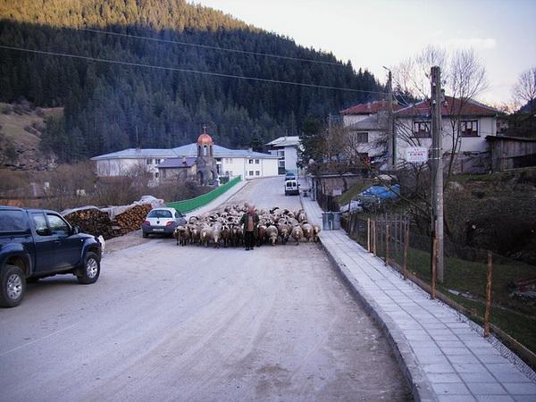 10 самых интересных фактов про Болгарию